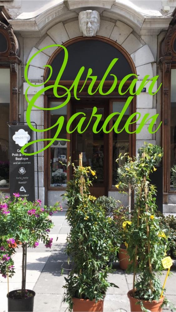 8ee2889608 Urban garden